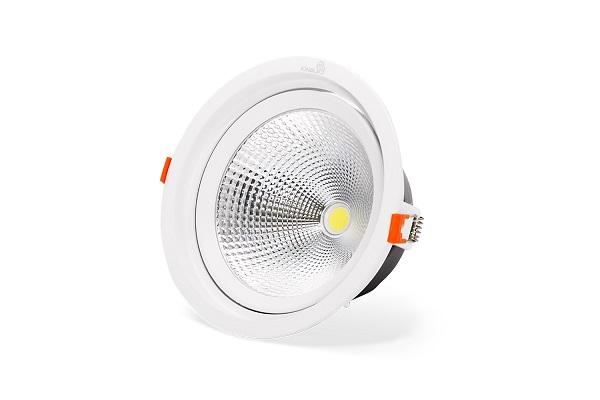 Đèn âm trần rọi điểm 20W Kingled DLR-20-T145-V